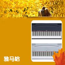 雅马哈牌电钢琴