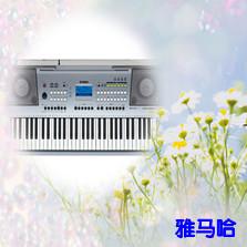 雅马哈牌电子琴