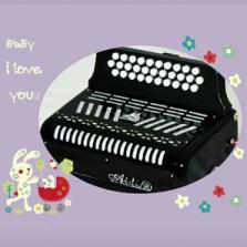 爱迪牌手风琴