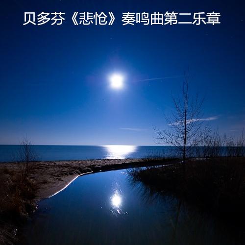贝多芬钢琴谱-《悲怆》奏鸣曲第二乐章
